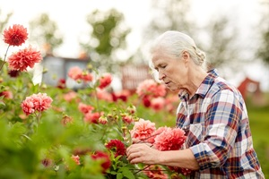Image of Gardening advice for older people